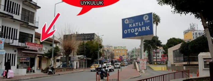 Antalyalı Bekir Usta Kokoreç is one of Haydar : понравившиеся места.