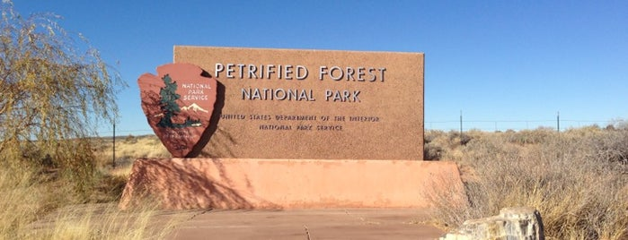 Petrified Forest National Park is one of Arizona.