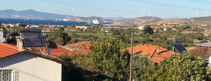 Badem Kahvaltı & Gözleme Evi is one of İzmir.