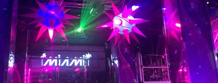 Miami a Go Go is one of strip clubs 3 XXX.