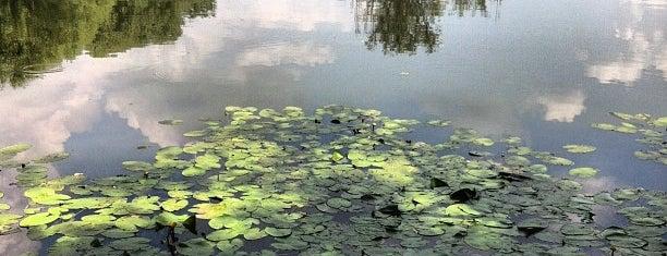 Jezero Savica is one of Zagreb's to-do list.