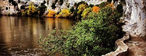 Νέστος Ποταμός is one of Steliosさんのお気に入りスポット.