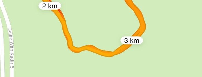 Taman Rimba Kiara TTDI is one of Lugares favoritos de Rahmat.