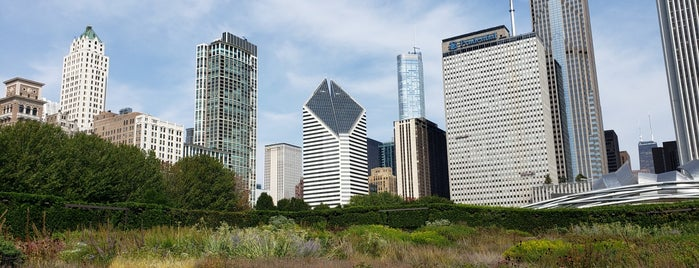 Lurie Garden is one of Favorite Kid Places in Chicago.