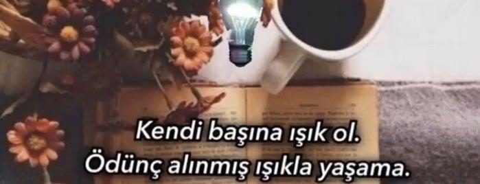 Estemita Klinik(Op.Dr.A.Hakan ÖLMEZTÜRK) is one of Tempat yang Disukai Pınar Arıkaya.