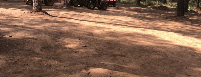 Yagna. Quad & Buggy Safari is one of bergama bosch öztüre ticaret.