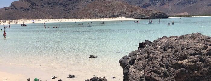 Playa Punta Balandra is one of สถานที่ที่ Viridiana ถูกใจ.