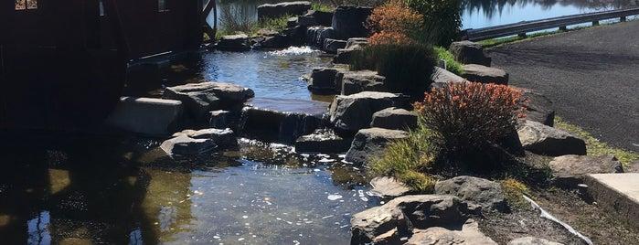 Horseshoe Lake Park is one of Portland.