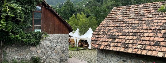 Flying Ostrich by Dolmama is one of Armenia 🇦🇲✨.
