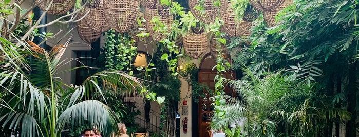 Galanga Thai House is one of Lugares por visitar.