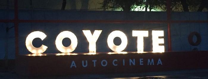 Autocinema Coyote is one of Ocio.
