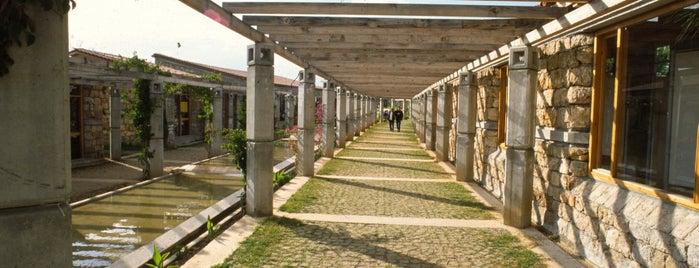 Olbia Çarşısı is one of Ağa Han Mimarlık Ödüllü Yapılar.