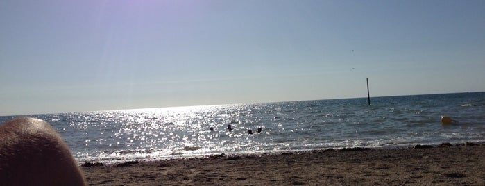 Plage d'Agon-Coutainville is one of Went Before 4.0.