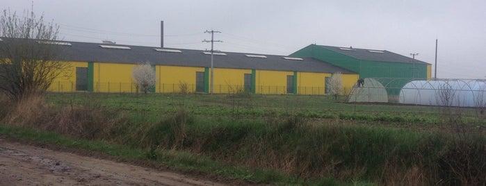 Комбікормовий завод компанії Cargill is one of Samet : понравившиеся места.