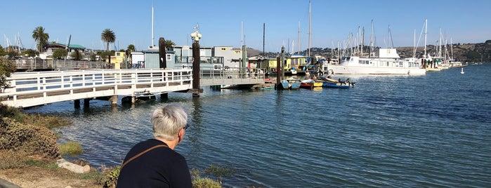 Galilee Harbor is one of Lieux qui ont plu à Mitch.