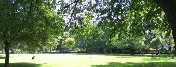 Palmerston Park is one of Parks & Recreation.