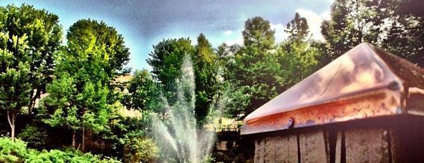 Glenwood Park is one of Locais curtidos por Charita.