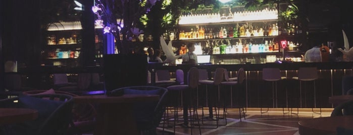 ginkgo sky bar is one of Madrid.