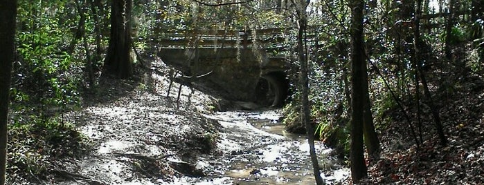 Cofrin Park Nature Trail Loop is one of Parks/Outdoors.
