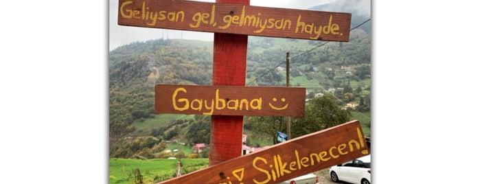 Hamsiköylü Ahmet Usta is one of สถานที่ที่บันทึกไว้ของ Özge.