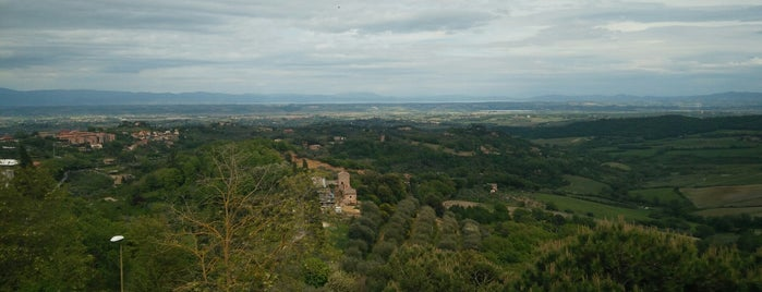 Montepulciano is one of Toscana.