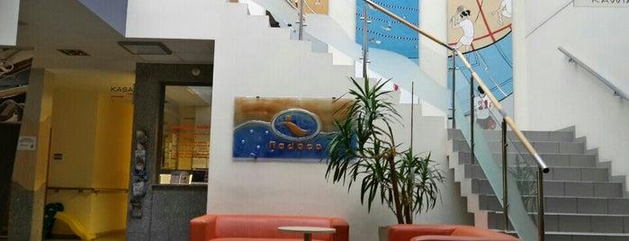 Centrum Basenowo-Sportowe Redeco is one of Lewando'nun Beğendiği Mekanlar.