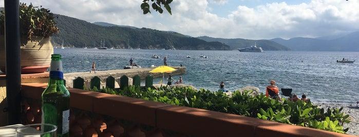 Da Emanuel is one of Best restaurants in Elba.