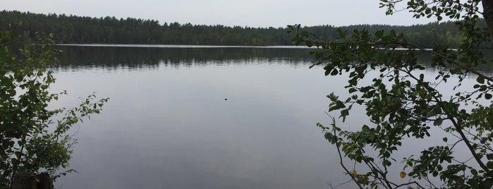 Голубые Озера is one of Lugares favoritos de Татьяна.