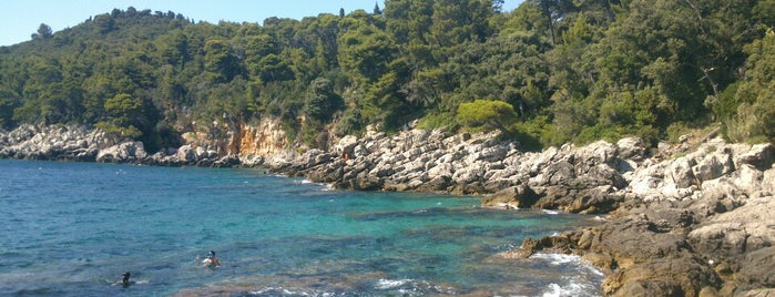 Lokrum Island is one of Dubrovnik.