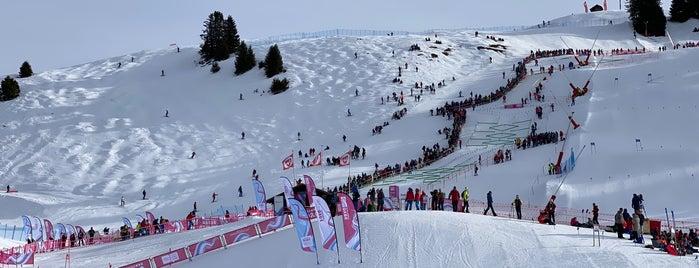 Villar Ski Resort is one of Lieux qui ont plu à David.