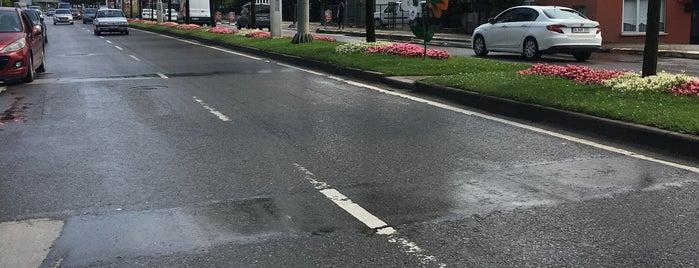 Bosna Caddesi is one of Lieux qui ont plu à Rıdvan.
