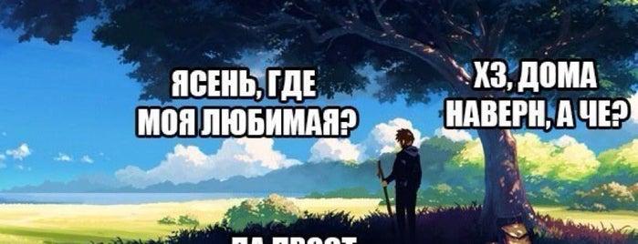 ЖК Брежневская плитка is one of Tafuin 님이 좋아한 장소.