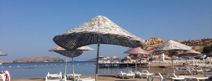Karakum Plajı is one of Locais curtidos por Nihan.