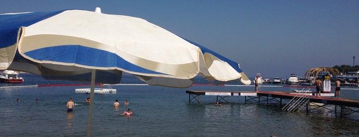 Aqua Green Beach is one of Posti che sono piaciuti a Nihan.