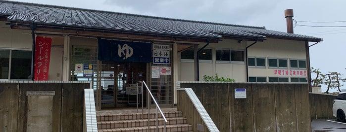 越前温泉 露天風呂 日本海 is one of 訪れた温泉施設.