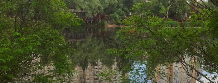 Озеро «Срібний кіл» is one of Lugares favoritos de Illia.