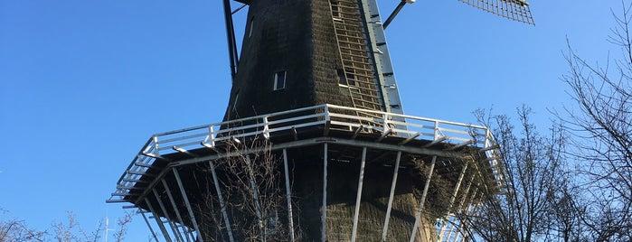 Molen De Bloem is one of The Netherlands.
