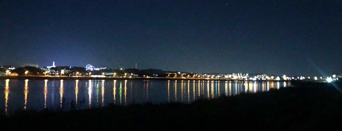 多摩川河川敷 is one of Orte, die モリチャン gefallen.