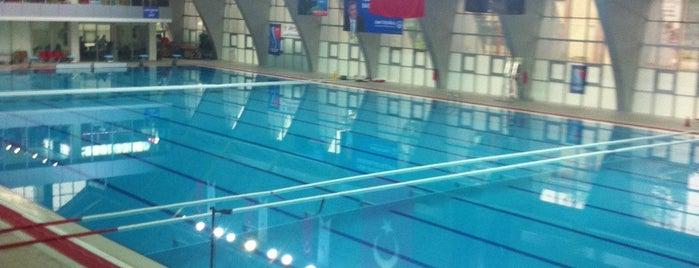 Sakarya Olimpik Yüzme Havuzu is one of สถานที่ที่บันทึกไว้ของ Altuğ.