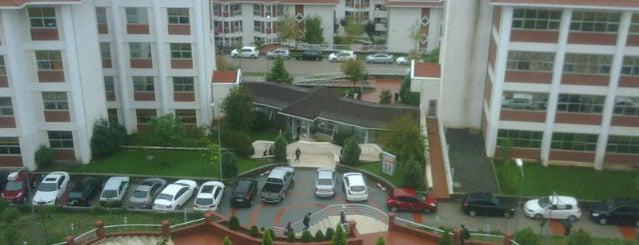 Işık Üniversitesi is one of İstanbul'daki Üniversite ve MYO'ların Kampüsleri.