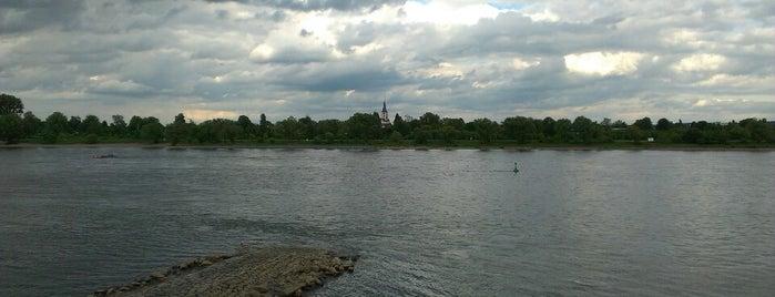 Bonner Rheinufer is one of Bonn.
