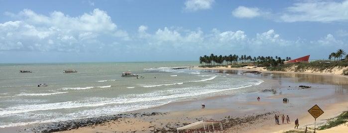 Maracajaú is one of Tempat yang Disimpan Silvia.