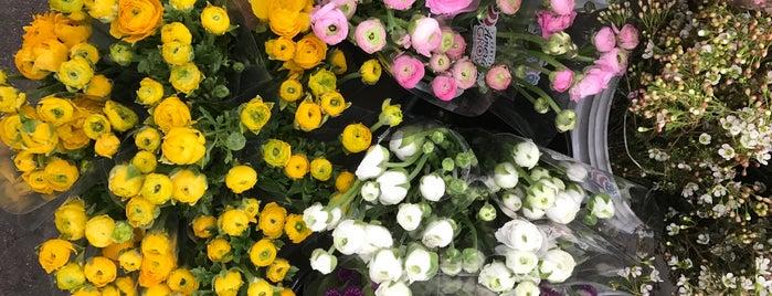 Los Angeles Flower Market is one of DTLA.