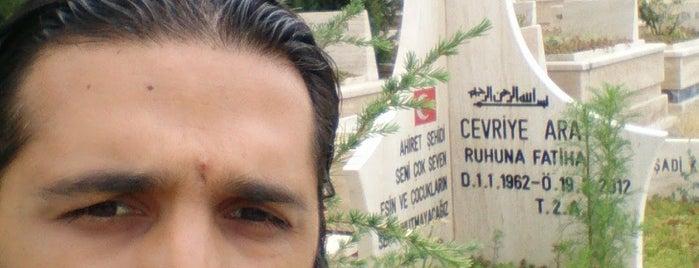 Karşıyaka Mezarlığı Camii is one of MTL : понравившиеся места.