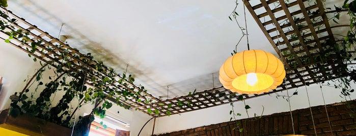 Samsara Foodhouse is one of Posti salvati di Ștefan.