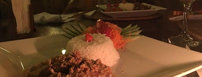 Restaurante Tigre Asiático is one of Lugares favoritos de Mil e Uma Viagens.