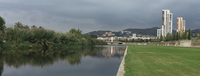 Parc Fluvial del Besòs is one of Veniceさんのお気に入りスポット.