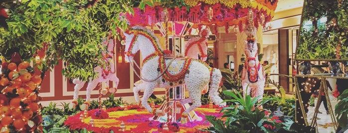 Wynn Las Vegas is one of สถานที่ที่ Alan ถูกใจ.