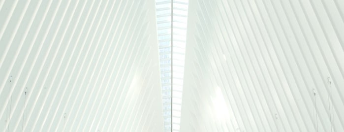 World Trade Center Transportation Hub (The Oculus) is one of Locais curtidos por Alan.