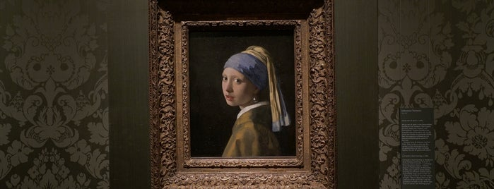 Mauritshuis is one of Orte, die Alan gefallen.